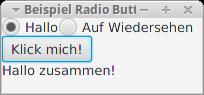 Anwendung mit zwei Radio Buttons.