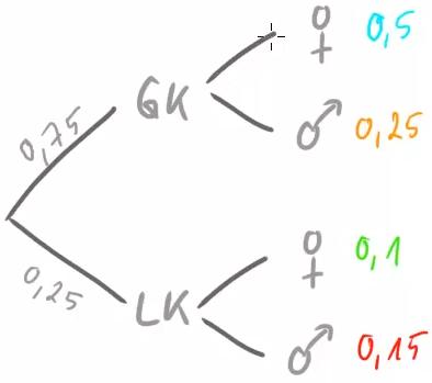 Ein Baumdiagramm1. Stufe GK/LK. 2. Stufe weiblich/männlich.