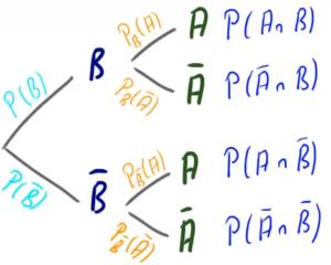 Ein umgekehrtes Baumdiagramm